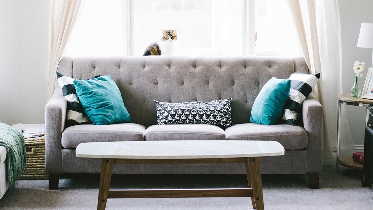 Plush empty grey sofa
