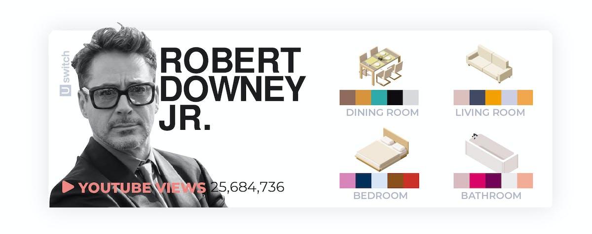 Robert Downey Jr colour palette