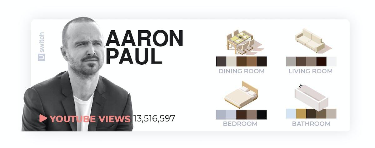 Aaron Paul colour palette