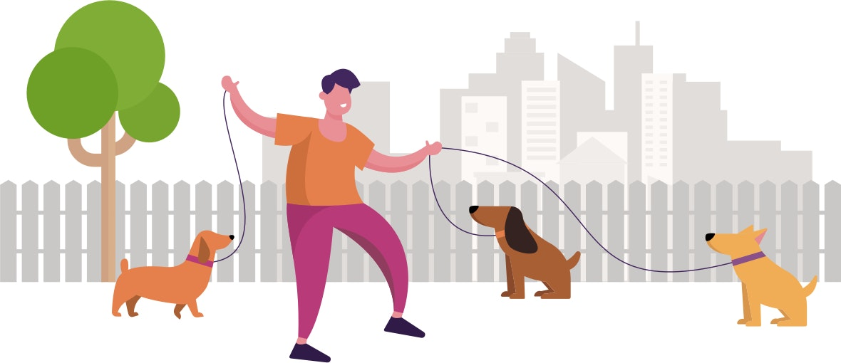 Graphic of man holding three dogs on leads
