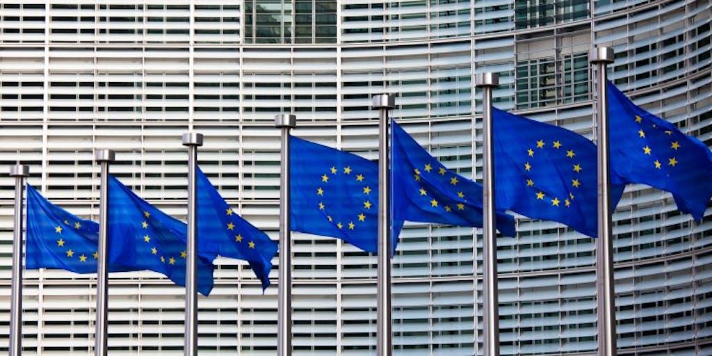Row of EU Flags