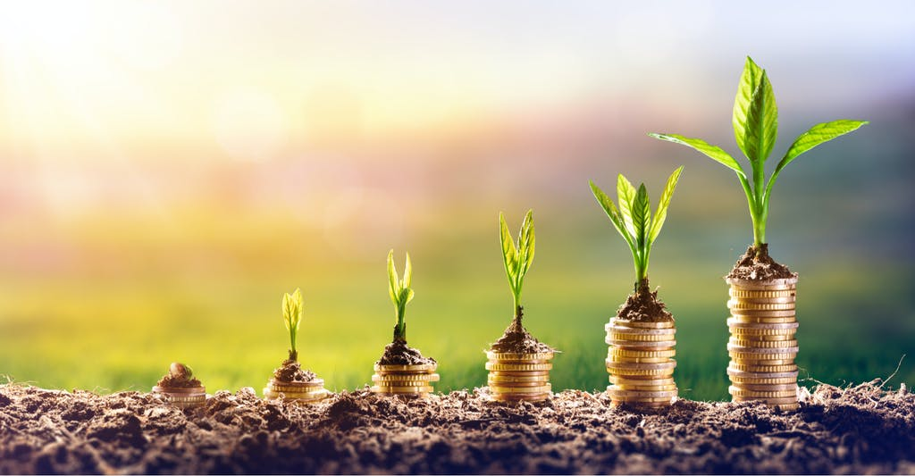 Growing Money - Plant On Coins is