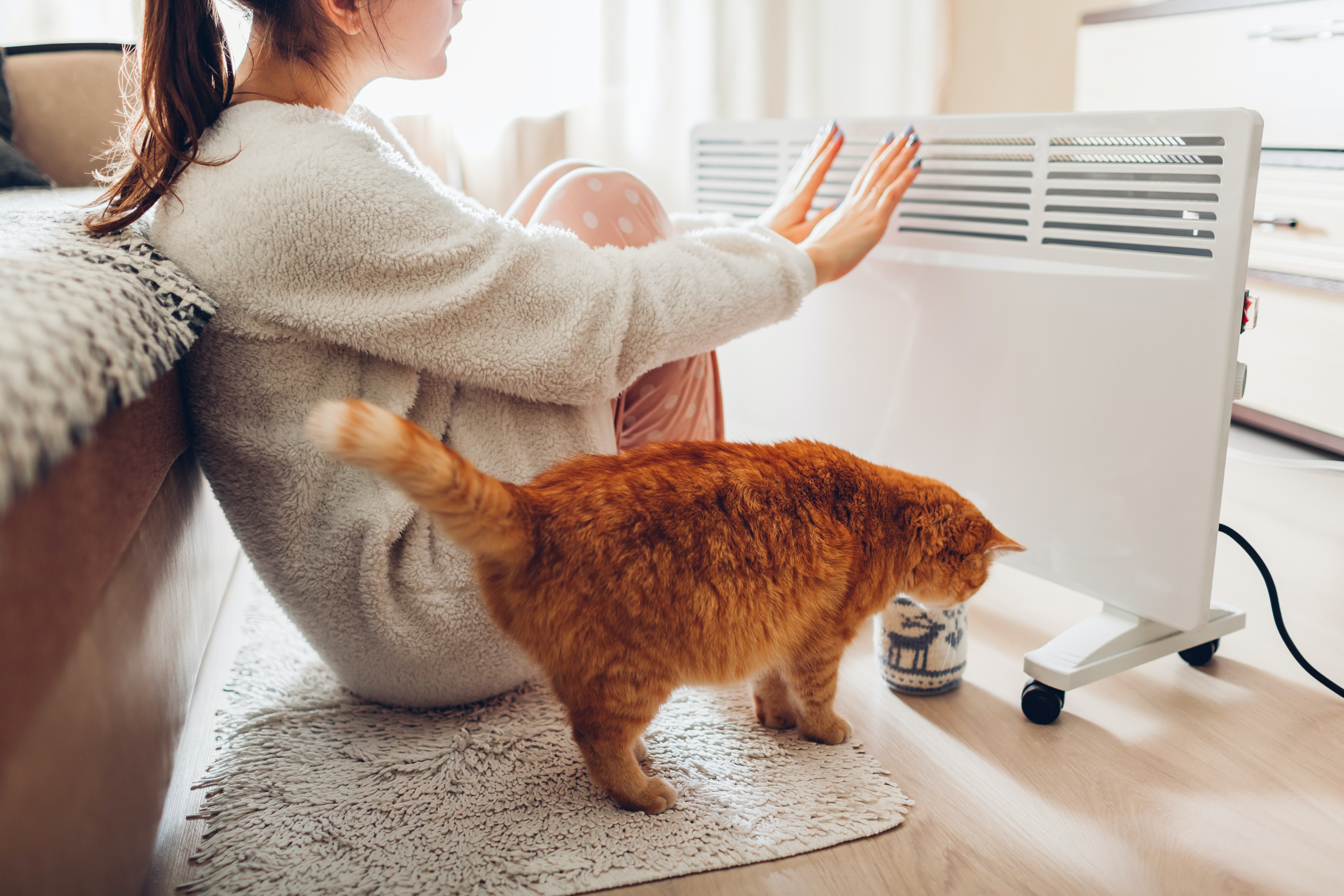 Woman and cat warming themselves by space heater
