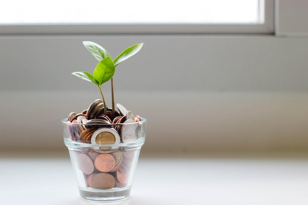 A picture of a plant growing from a plant pot filled with coins.