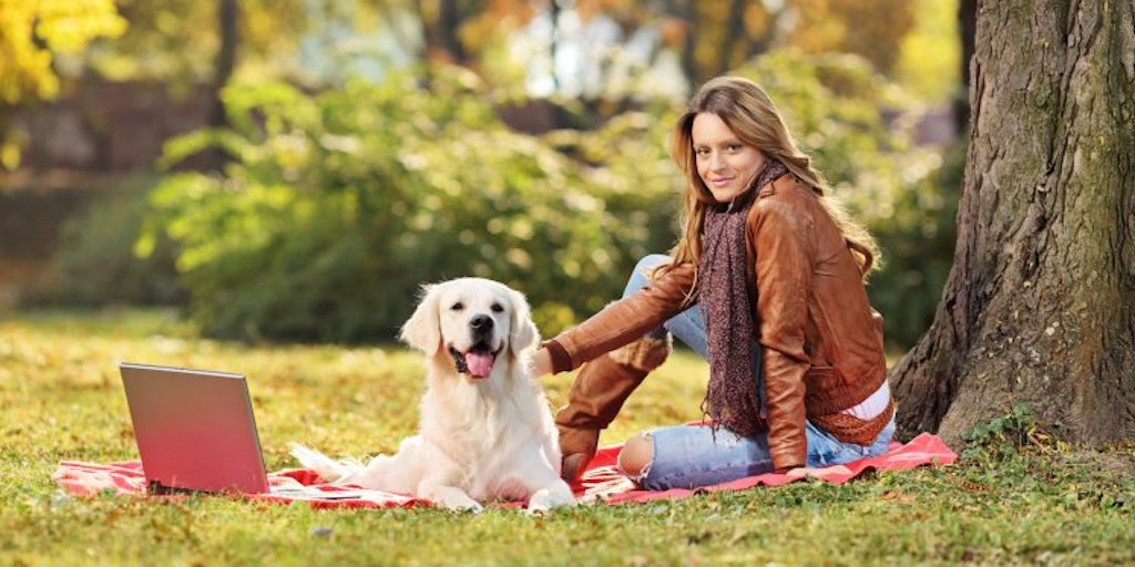 Make Sure Your Pet Insurance Pays Out Money Co Uk