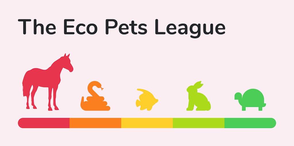 Header image for Eco Pet League